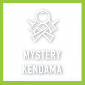 Mystery Kendamas